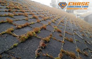 ENVIRONMENTAL FACTORS SLOWLY DETERIORATING YOUR ROOF!