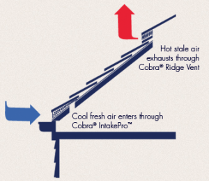 proper attic ventilation is key for any roof system